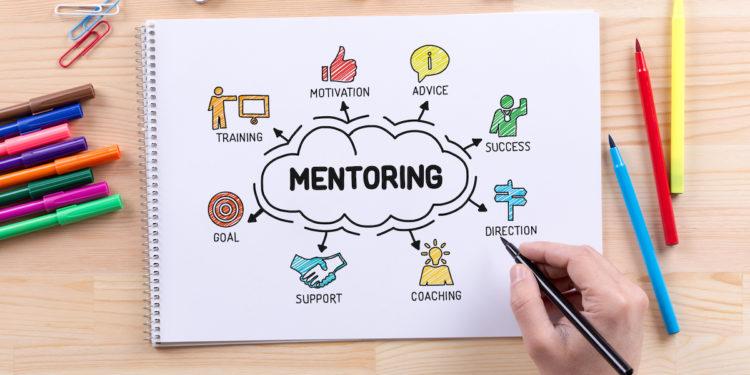 creating mentoring program for your small biz