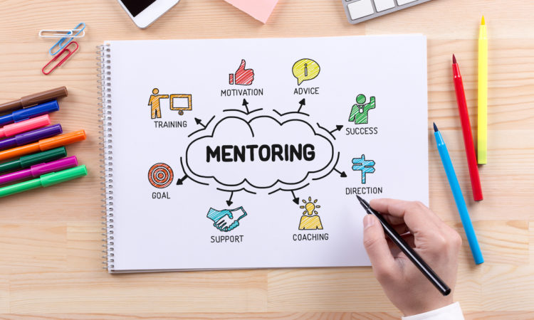 creating mentoring program for your small biz