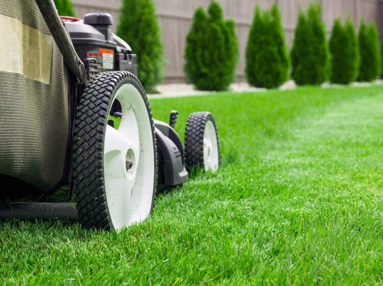 lawn care customers